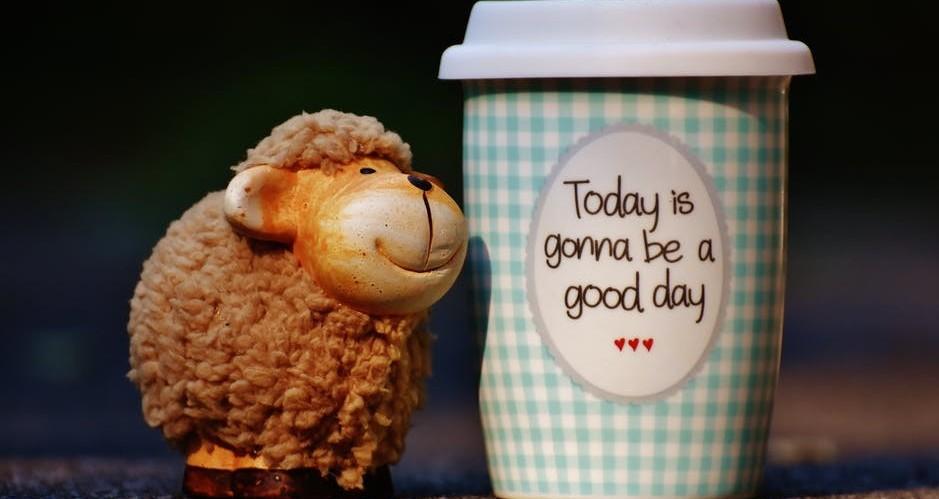 Steps to having a positive mindset open